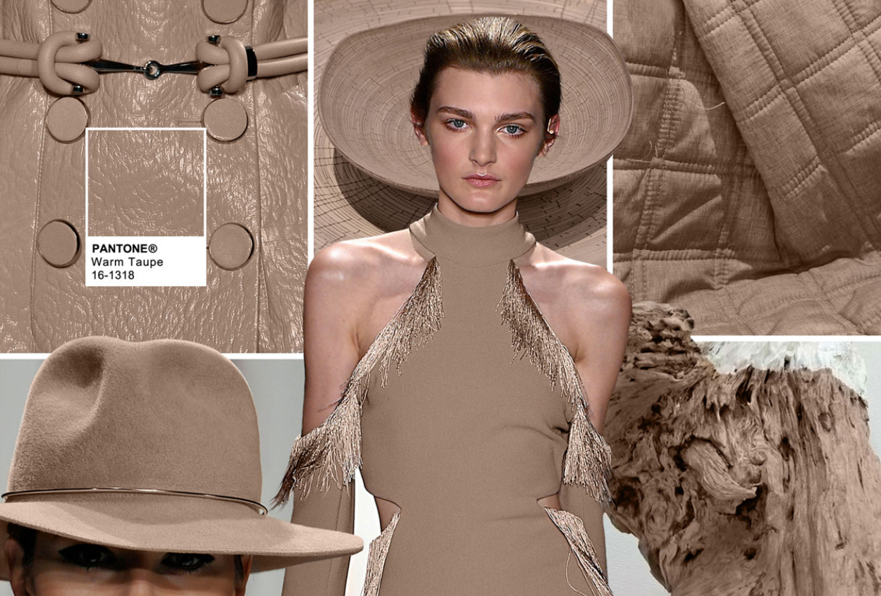 Les 10 couleurs de l automne hiver 2016 2017 selon pantone for What is taupe color look like